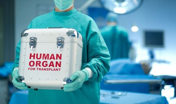 The ultimate research goal is to grow human organs inside live animals as a way to resolve the crisis of organ transplantation