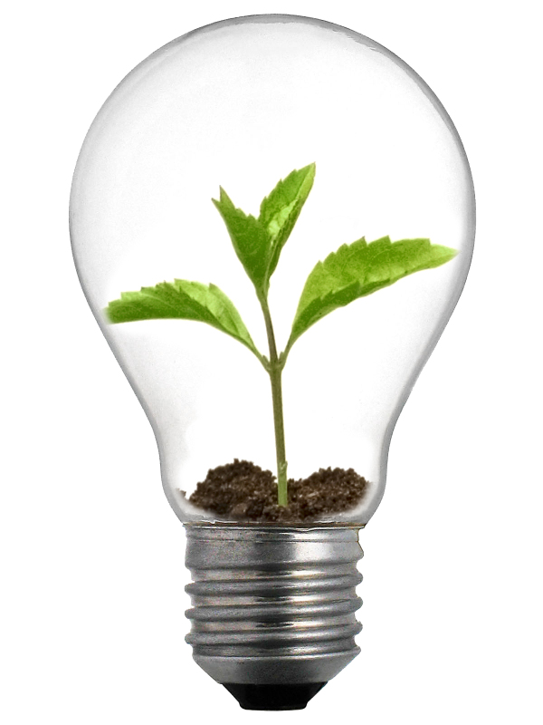 Venture capital light bulb 编辑